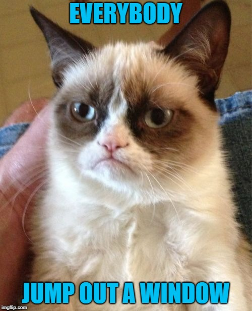 Grumpy Cat Meme | EVERYBODY JUMP OUT A WINDOW | image tagged in memes,grumpy cat | made w/ Imgflip meme maker