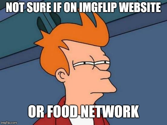 Futurama Fry Meme | NOT SURE IF ON IMGFLIP WEBSITE OR FOOD NETWORK | image tagged in memes,futurama fry | made w/ Imgflip meme maker
