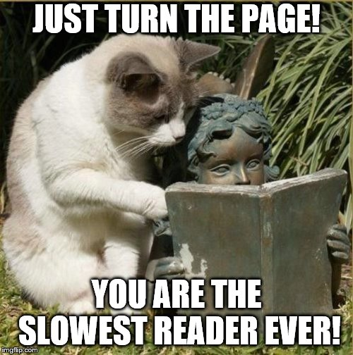 Slow readers | JUST TURN THE PAGE! YOU ARE THE SLOWEST READER EVER! | image tagged in reading,slow readers,cat memes | made w/ Imgflip meme maker