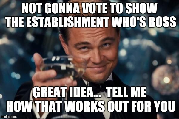 Leonardo Dicaprio Cheers Meme | NOT GONNA VOTE TO SHOW THE ESTABLISHMENT WHO'S BOSS GREAT IDEA...  TELL ME HOW THAT WORKS OUT FOR YOU | image tagged in memes,leonardo dicaprio cheers | made w/ Imgflip meme maker