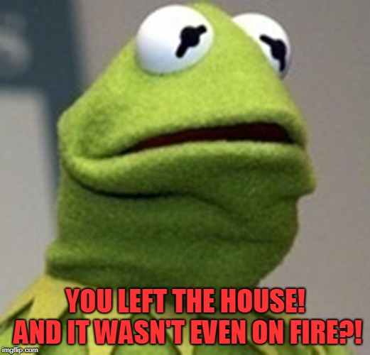 hermit afraid | YOU LEFT THE HOUSE! AND IT WASN'T EVEN ON FIRE?! | image tagged in hermit afraid | made w/ Imgflip meme maker
