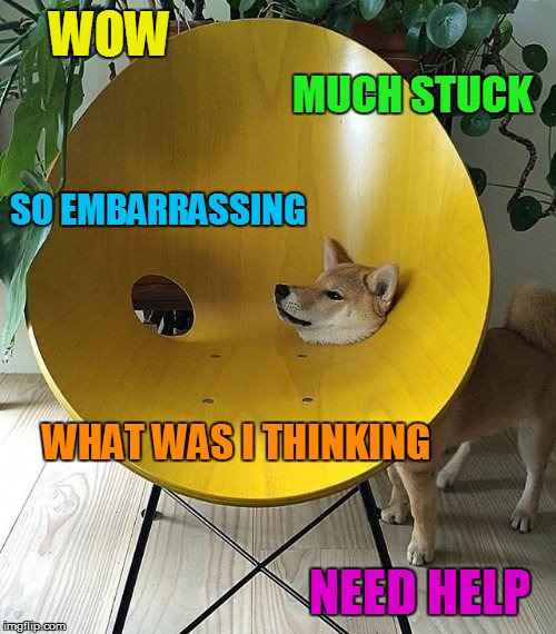 Fail Week From August 27th to September 3rd. (A Landon_the_memer event) | WOW NEED HELP MUCH STUCK SO EMBARRASSING WHAT WAS I THINKING | image tagged in memes,fail week,fail,doge,stuck,dog | made w/ Imgflip meme maker
