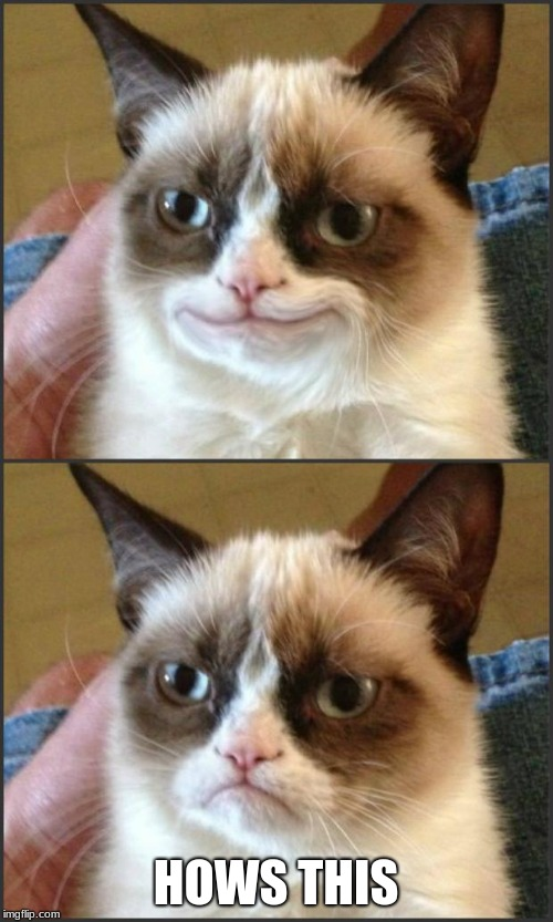 Happy Grumpy cat photoshop | HOWS THIS | image tagged in happy grumpy cat photoshop | made w/ Imgflip meme maker