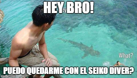 Memes de SEIKO  2h53b6