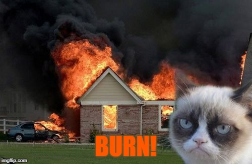 Burn Kitty Meme | BURN! | image tagged in memes,burn kitty,grumpy cat | made w/ Imgflip meme maker