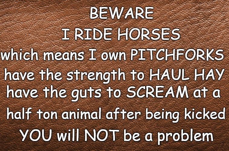 Words of Wisdom | BEWARE YOU will NOT be a problem I RIDE HORSES which means I own PITCHFORKS have the strength to HAUL HAY have the guts to SCREAM at a half  | image tagged in horses,horse,animals,verse,just horsing around,only fools and horses | made w/ Imgflip meme maker