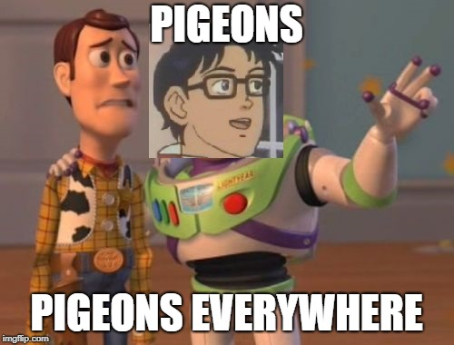 PIGEONS PIGEONS EVERYWHERE | made w/ Imgflip meme maker