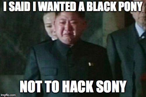 Kim Jong Un Sad |  I SAID I WANTED A BLACK PONY; NOT TO HACK SONY | image tagged in memes,kim jong un sad | made w/ Imgflip meme maker