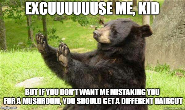 How about no bear | EXCUUUUUUSE ME, KID BUT IF YOU DON'T WANT ME MISTAKING YOU FOR A MUSHROOM, YOU SHOULD GET A DIFFERENT HAIRCUT | image tagged in how about no bear | made w/ Imgflip meme maker