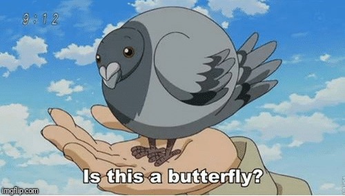 Is it? | . | image tagged in is this a pigeon,is this a butterfly,memes,ilikepie314159265358979 | made w/ Imgflip meme maker
