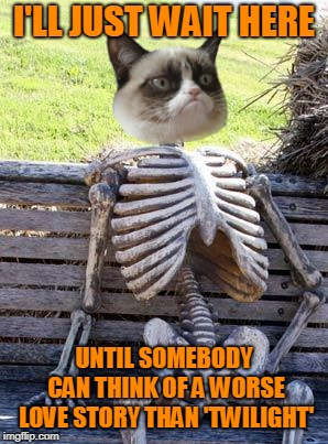 Waiting Skeleton Meme | I'LL JUST WAIT HERE UNTIL SOMEBODY CAN THINK OF A WORSE LOVE STORY THAN 'TWILIGHT' | image tagged in memes,waiting skeleton | made w/ Imgflip meme maker
