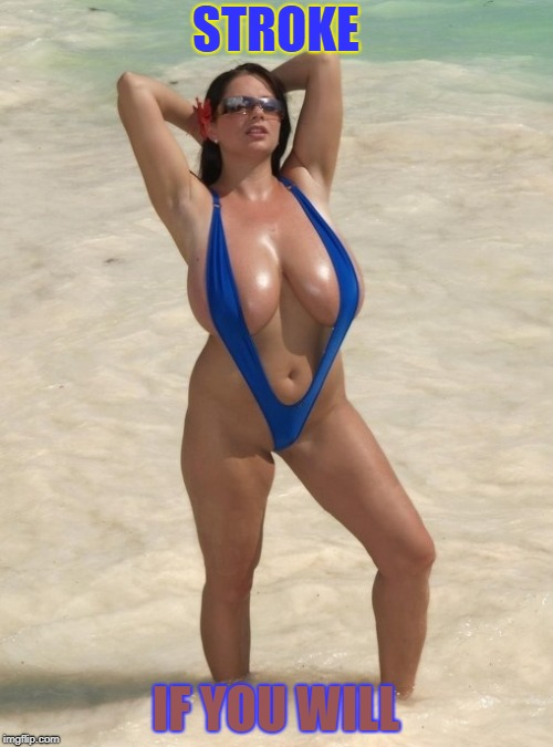 monokini breasts | STROKE IF YOU WILL | image tagged in monokini breasts | made w/ Imgflip meme maker
