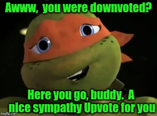 Awww,  you were downvoted? Here you go, buddy.  A nice sympathy Upvote for you | made w/ Imgflip meme maker