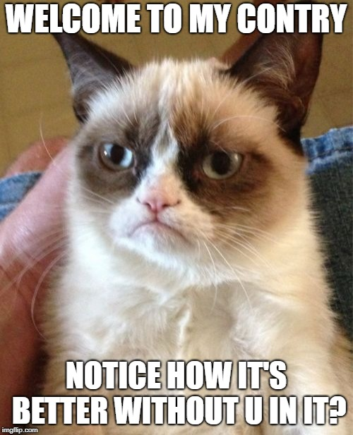 Grumpy Cat Meme | WELCOME TO MY CONTRY NOTICE HOW IT'S BETTER WITHOUT U IN IT? | image tagged in memes,grumpy cat | made w/ Imgflip meme maker