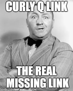 Curly | CURLY Q LINK THE REAL MISSING LINK | image tagged in curly | made w/ Imgflip meme maker