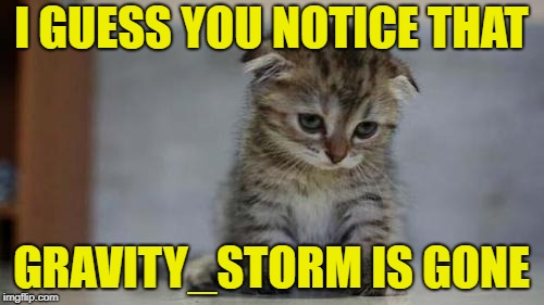 Sad kitten | I GUESS YOU NOTICE THAT GRAVITY_STORM IS GONE | image tagged in sad kitten | made w/ Imgflip meme maker