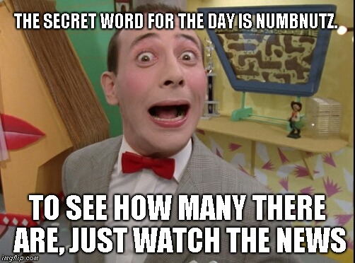 Peewee Herman secret word of the day |  THE SECRET WORD FOR THE DAY IS NUMBNUTZ. TO SEE HOW MANY THERE ARE, JUST WATCH THE NEWS | image tagged in peewee herman secret word of the day | made w/ Imgflip meme maker