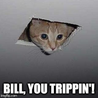 Ceiling Cat Meme | BILL, YOU TRIPPIN'! | image tagged in memes,ceiling cat | made w/ Imgflip meme maker
