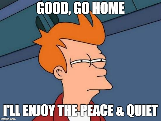 Futurama Fry Meme | GOOD, GO HOME I'LL ENJOY THE PEACE & QUIET | image tagged in memes,futurama fry | made w/ Imgflip meme maker
