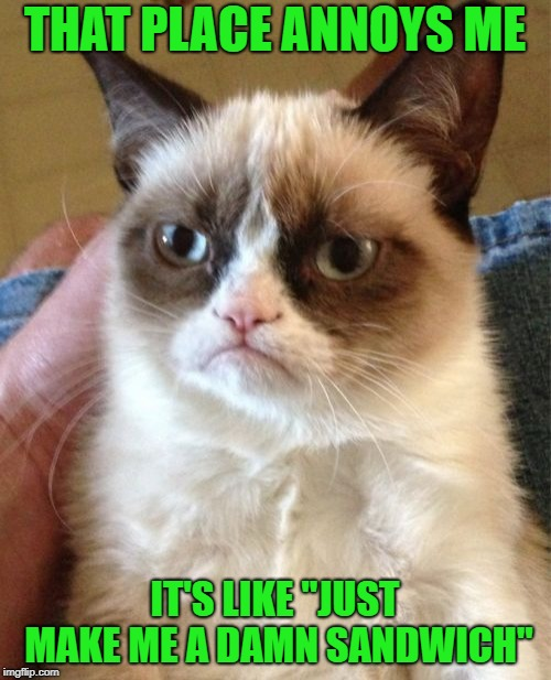 "Grumpy Cat Meme | THAT PLACE ANNOYS ME IT'S LIKE ""JUST MAKE ME A DAMN SANDWICH"" 