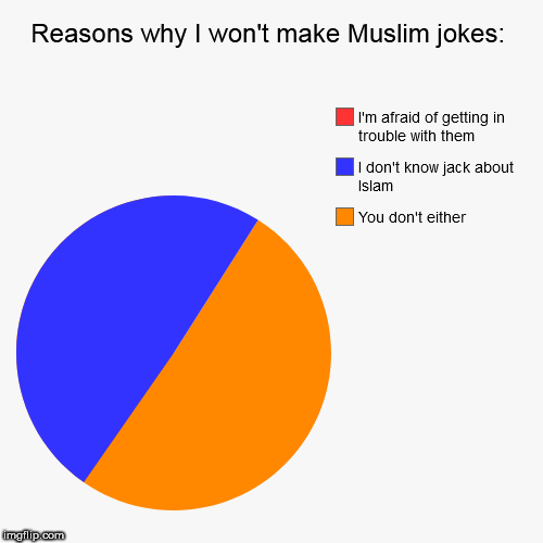 Reasons why I won't make Muslim jokes: | You don't either, I don't know jack about Islam, I'm afraid of getting in trouble with them | image tagged in funny,pie charts,muslim | made w/ Imgflip chart maker