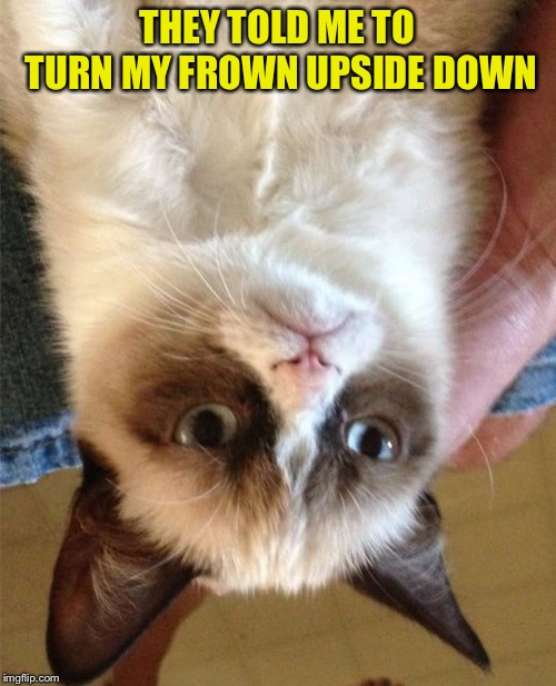Grumpy Cat Meme | THEY TOLD ME TO TURN MY FROWN UPSIDE DOWN | image tagged in memes,grumpy cat | made w/ Imgflip meme maker