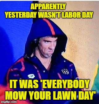 So much for some peace & quiet |  APPARENTLY YESTERDAY WASN'T LABOR DAY; IT WAS 'EVERYBODY MOW YOUR LAWN DAY' | image tagged in memes,michael phelps death stare,lawnmower,noise | made w/ Imgflip meme maker