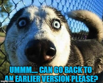 Scared dog | UMMM.... CAN GO BACK TO AN EARLIER VERSION PLEASE? | image tagged in scared dog | made w/ Imgflip meme maker