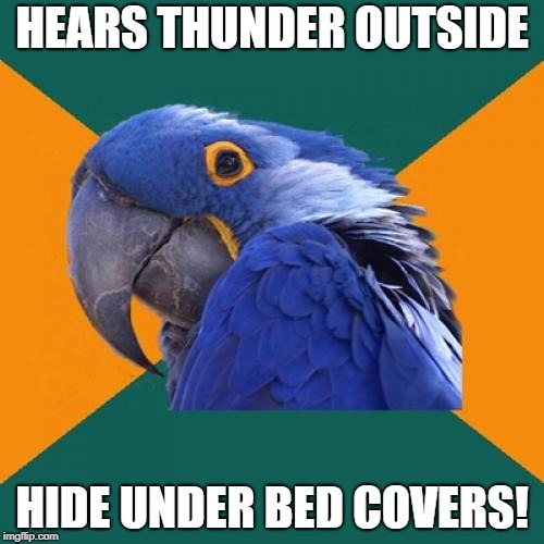 I don't do this/ | HEARS THUNDER OUTSIDE HIDE UNDER BED COVERS! | image tagged in memes,paranoid parrot,thunder,bed | made w/ Imgflip meme maker