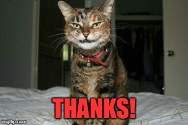 Evil Smile Cat | THANKS! | image tagged in evil smile cat | made w/ Imgflip meme maker