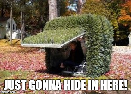 hiding in a bush | JUST GONNA HIDE IN HERE! | image tagged in hiding in a bush | made w/ Imgflip meme maker