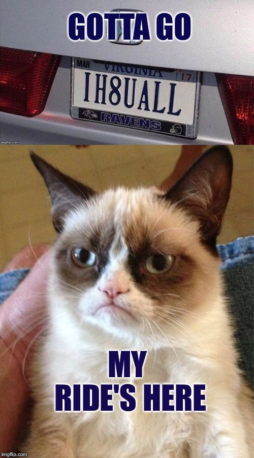 H8ers gonna h8. | GOTTA GO MY RIDE'S HERE | image tagged in grumpy cat,car,license plate,memes,funny | made w/ Imgflip meme maker