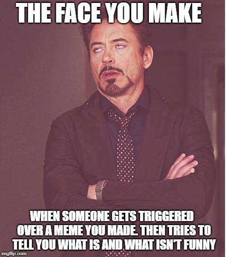 THE FACE YOU MAKE WHEN SOMEONE GETS TRIGGERED  OVER A MEME YOU MADE. THEN TRIES TO TELL YOU WHAT IS AND WHAT ISN'T FUNNY | image tagged in memes,face you make robert downey jr | made w/ Imgflip meme maker