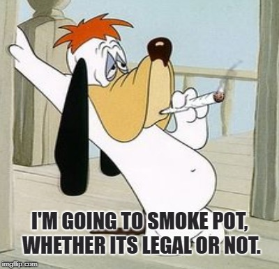 Droopy Does Dope | I'M GOING TO SMOKE POT, WHETHER ITS LEGAL OR NOT. | image tagged in marijuana,cannabis,pot,herb,reefer,joint | made w/ Imgflip meme maker
