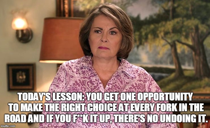 Choice.  It's what shows people who you are. | TODAY'S LESSON: YOU GET ONE OPPORTUNITY TO MAKE THE RIGHT CHOICE AT EVERY FORK IN THE ROAD AND IF YOU F**K IT UP, THERE'S NO UNDOING IT. | image tagged in karma,roseanne,roseanne barr,teachable moment | made w/ Imgflip meme maker