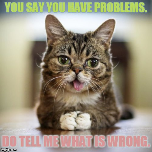 Psych Cat | YOU SAY YOU HAVE PROBLEMS. DO TELL ME WHAT IS WRONG. | image tagged in memes,cat,life problems,the problem is,tell me more,what could go wrong | made w/ Imgflip meme maker