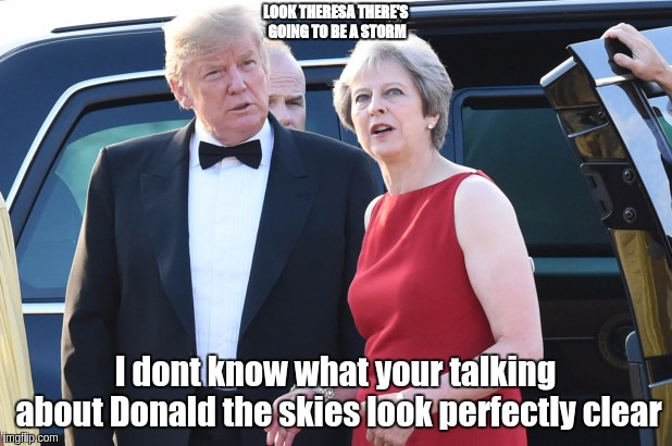 #THESTORM | LOOK THERESA THERE'S GOING TO BE A STORM I dont know what your talking about Donald the skies look perfectly clear | image tagged in theresa may,donald trump,vatican,pope francis,human rights,child abuse | made w/ Imgflip meme maker
