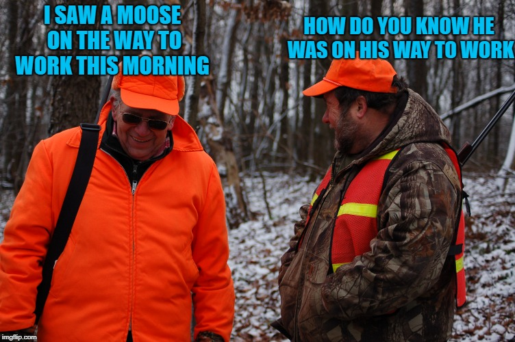 bad pun | I SAW A MOOSE ON THE WAY TO WORK THIS MORNING HOW DO YOU KNOW HE WAS ON HIS WAY TO WORK | image tagged in pun,bad | made w/ Imgflip meme maker