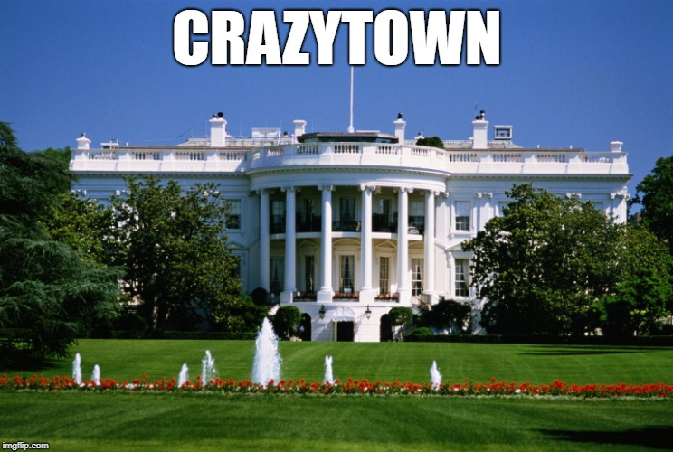 CRAZYTOWN | image tagged in white house | made w/ Imgflip meme maker