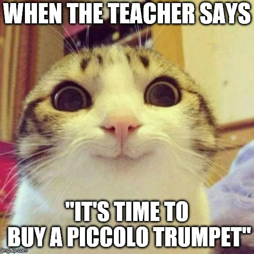 "Desires of a trumpeter | WHEN THE TEACHER SAYS ""IT'S TIME TO BUY A PICCOLO TRUMPET"" 
