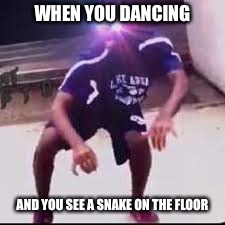yeet | WHEN YOU DANCING AND YOU SEE A SNAKE ON THE FLOOR | image tagged in yeet,memes,animals,snake,funny dancing,snakes | made w/ Imgflip meme maker