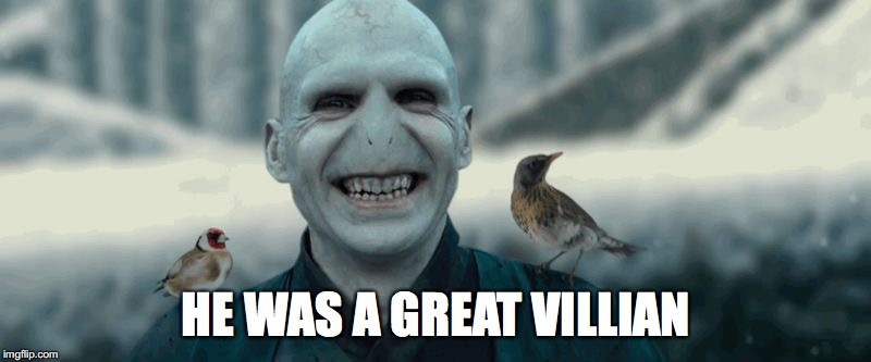 Voldemort | HE WAS A GREAT VILLIAN | image tagged in voldemort | made w/ Imgflip meme maker