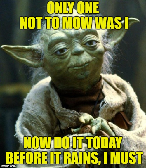 Star Wars Yoda Meme | ONLY ONE NOT TO MOW WAS I NOW DO IT TODAY BEFORE IT RAINS, I MUST | image tagged in memes,star wars yoda | made w/ Imgflip meme maker