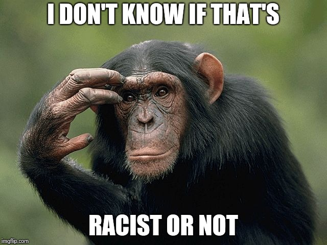 Thinking monkey | I DON'T KNOW IF THAT'S RACIST OR NOT | image tagged in thinking monkey | made w/ Imgflip meme maker