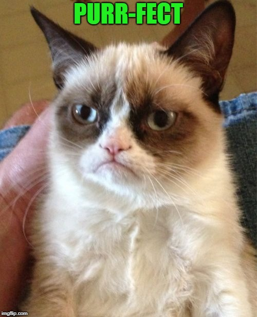 Grumpy Cat Meme | PURR-FECT | image tagged in memes,grumpy cat | made w/ Imgflip meme maker