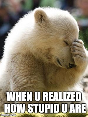 how stupid | WHEN U REALIZED HOW STUPID U ARE | image tagged in memes,facepalm bear | made w/ Imgflip meme maker