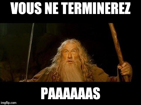 You shall not pass |  VOUS NE TERMINEREZ; PAAAAAAS | image tagged in you shall not pass | made w/ Imgflip meme maker