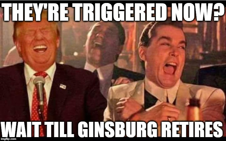 Trump Good Fellas | THEY'RE TRIGGERED NOW? WAIT TILL GINSBURG RETIRES | image tagged in trump good fellas,ruth bader ginsburg,supreme court,maga,trump 2020 | made w/ Imgflip meme maker