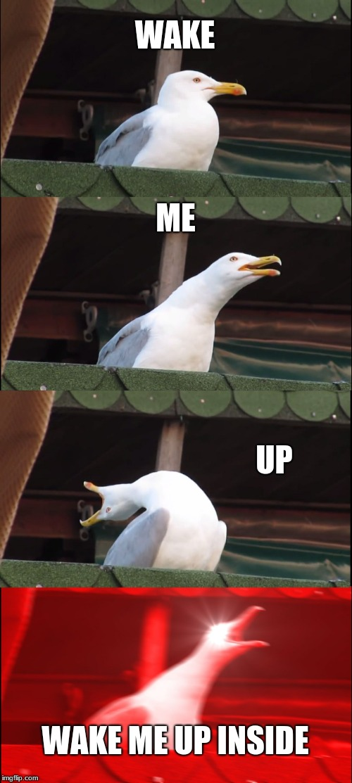 Wake it up! | WAKE ME UP WAKE ME UP INSIDE | image tagged in memes,inhaling seagull | made w/ Imgflip meme maker