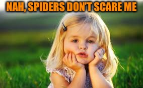 NAH, SPIDERS DON'T SCARE ME | made w/ Imgflip meme maker
